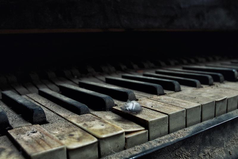 """Etwas Poesie - Dieses Detail zeigt ein altes Klavier, auf einer Taste """"schlummert"""" eine Feder. Nicole Staniewski hat mit diesem Foto den Bildband """"Beelitz Heilstätten"""", die DVD-Trilogie """"Geschichten hinter vergessenen Mauern"""" und einen A3-Kalender gewonnen."""