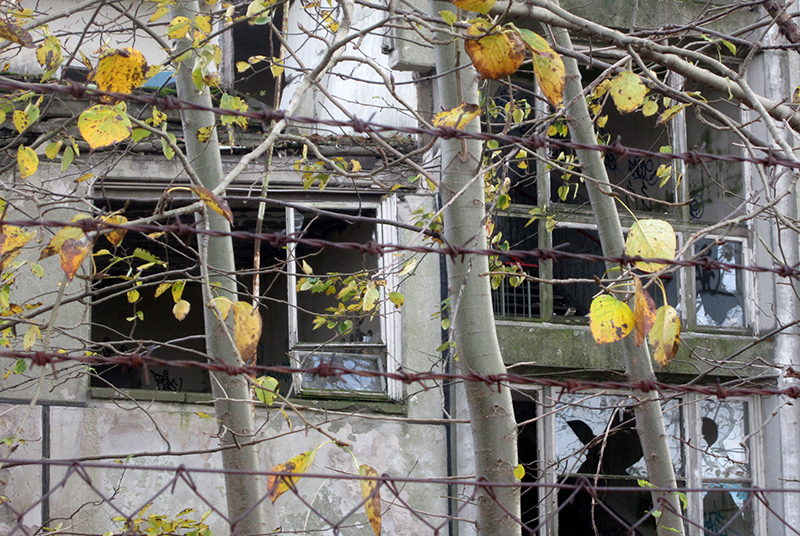 Schule_Haus-2_2014-10-26_016_1-OG