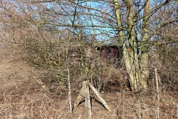 Bauernhaus_Kaunitz22