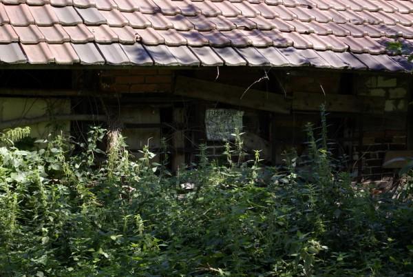 Bauernhaus_Kaunitz8